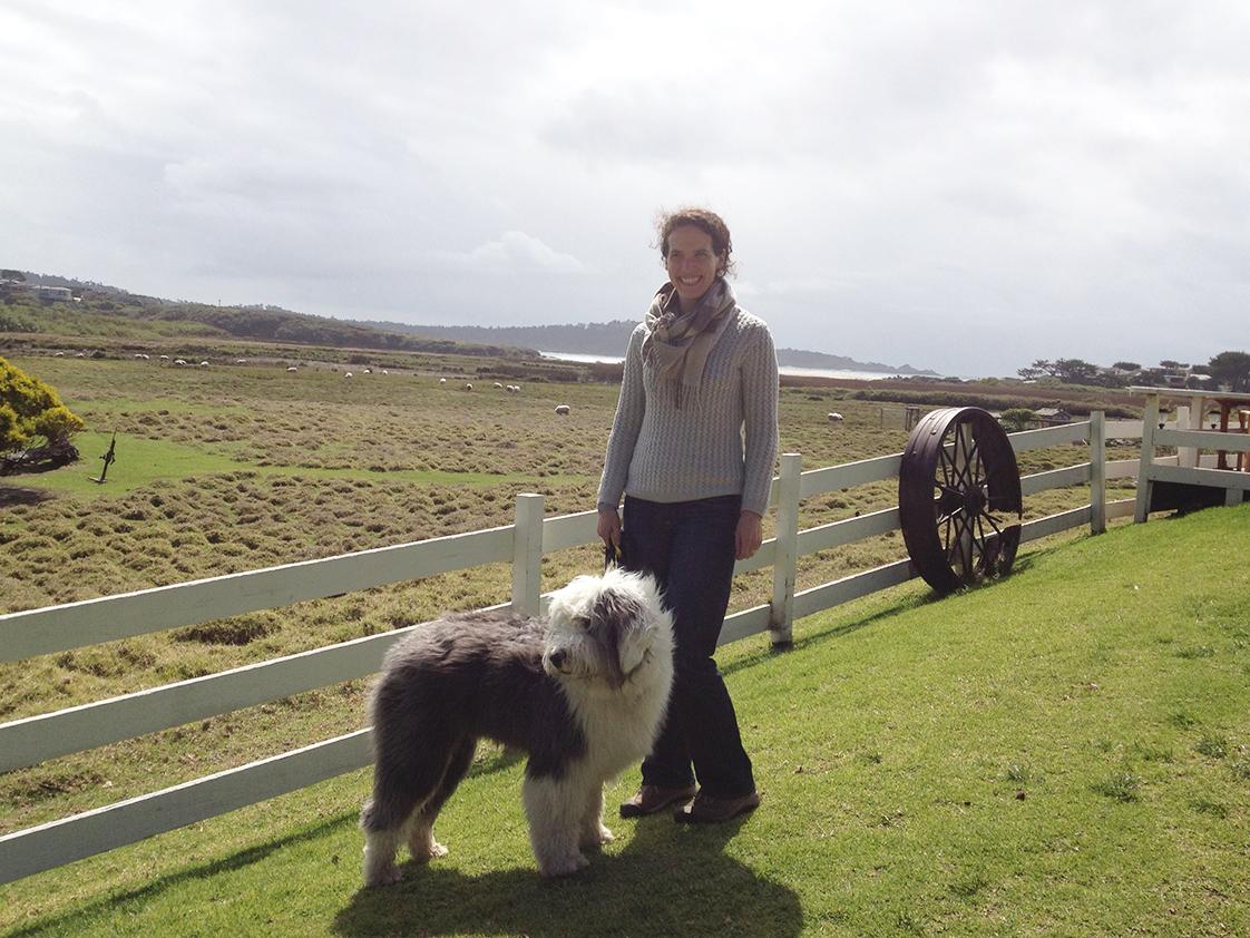 Katy Faix dog and sheep