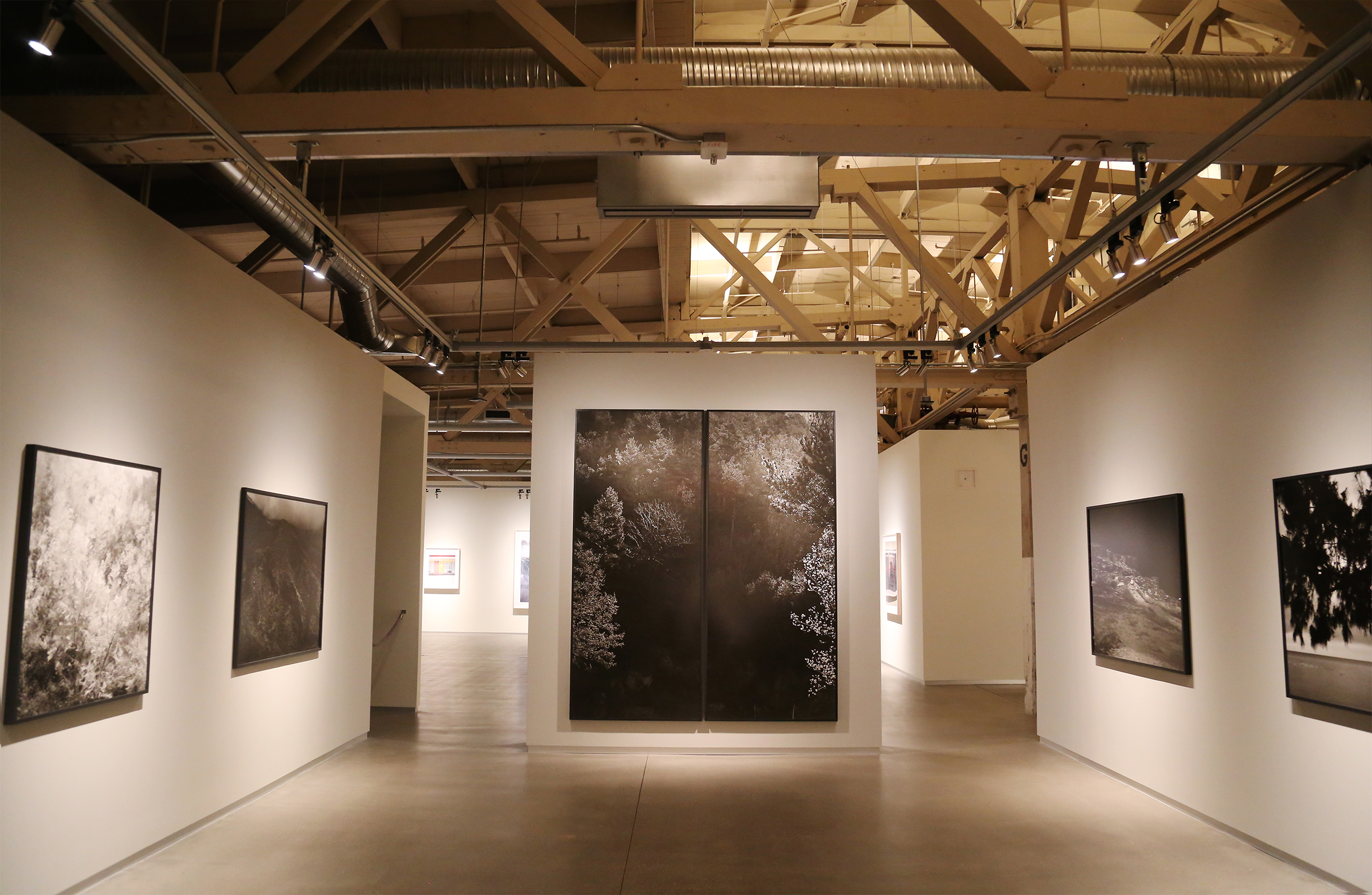 Pier 24 Photography Exhibit Space with Wood Truss Ceiling